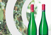 ORB-wijnen-nederlandsewijn